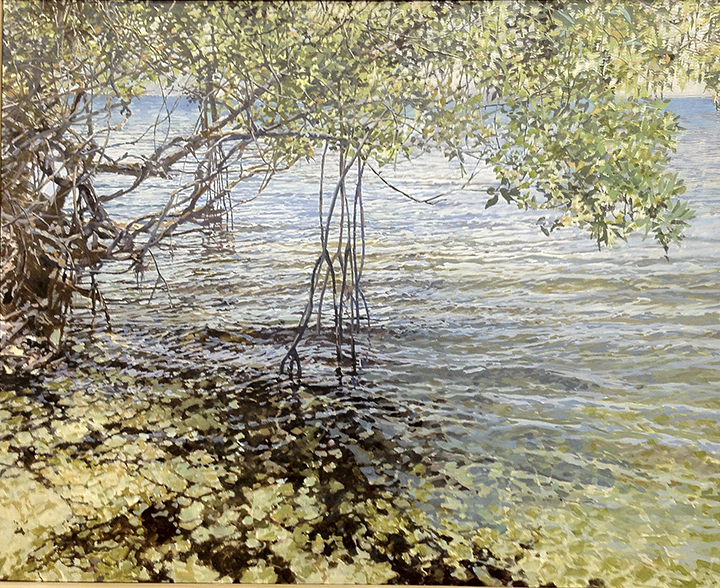 "Mangrove w/Shadows  30"" X 30"""
